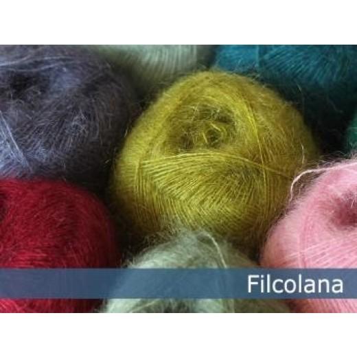Tilia filcolana